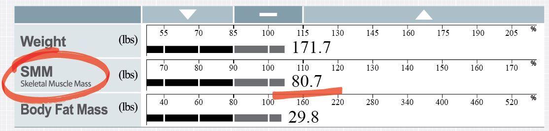 grafikon sa skeletna mišićna masa SMM